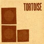 tortoise-tortoise